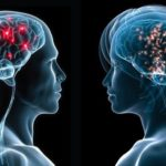 мозг люди