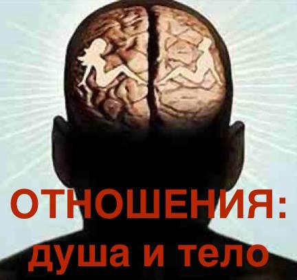 мж мозг ОТН